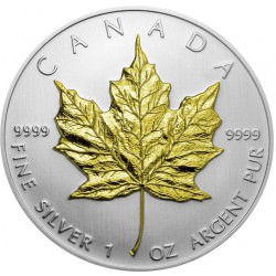 1 oz silver Maple Leaf 2013 gilded