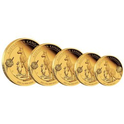 PM Australian Kangaroo 2020 1/4oz Gold Proof Coin