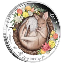 Perth Mint Dreaming Down Under – Kangaroo 2021 1/2oz Silver Proof Coin