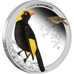 Regent Bowerbird 2013 1/2oz Silver Proof Coin