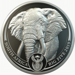 South Africa 1 oz platinum BIG FIVE 2019 ELEPHANT PROOF Box + Coa 20 Rand