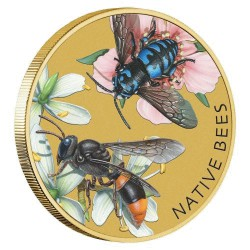 Native Bees 2019 Stamp and Coin Cover